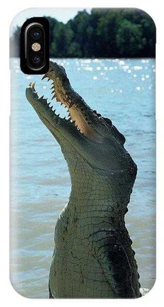 Crocodile iPhone Case - Crocodile by Pasquale Sorrentino/science Photo Library