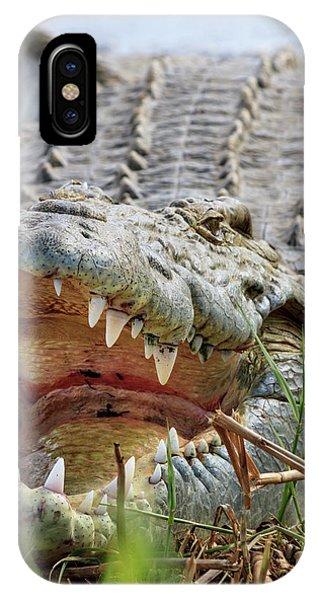 Crocodile iPhone Case - Crocodile Venting His Teeth by Tom Norring