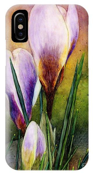 Violet iPhone Case - Crocus by Hailey E Herrera