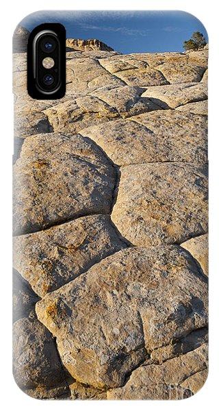 Cross-bedded Sandstone Slickrock IPhone Case