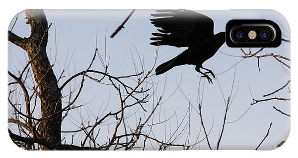 Crow In Flight IPhone Case