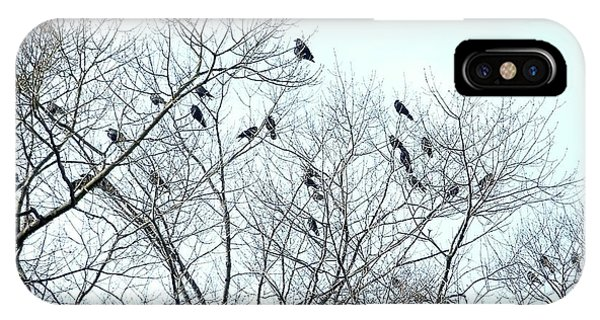 Crow Trees IPhone Case
