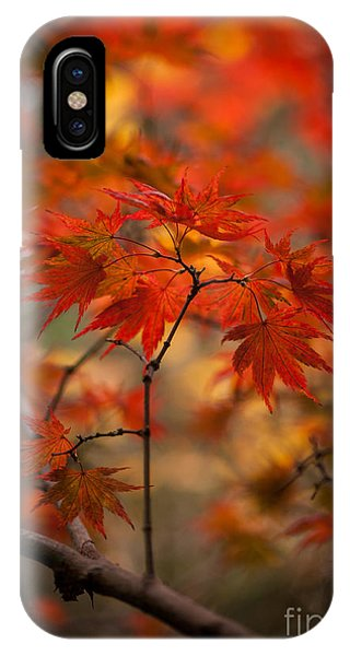 Crown Of Fire IPhone Case