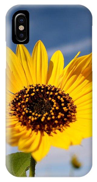 Sherri iPhone Case - Crown Of Glory by Sherri Williams