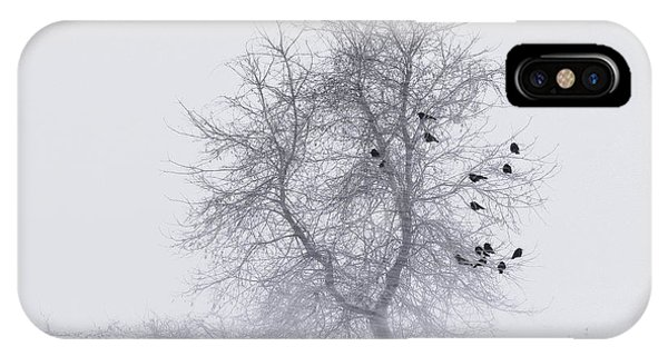 Crows On Tree In Winter Snow Storm IPhone Case