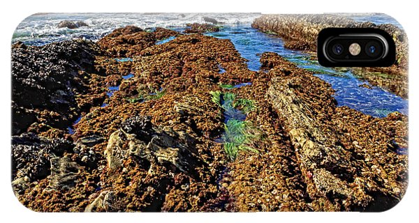Crystal Cove Tide Pools  Phone Case by Donna Pagakis