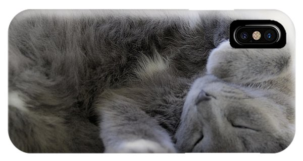 IPhone Case featuring the photograph Cuddley Cat by Debbie Cundy