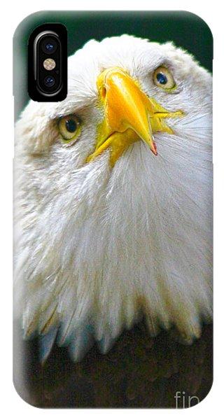 Curious Eagle IPhone Case