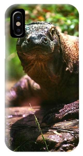 Curious Komodo IPhone Case