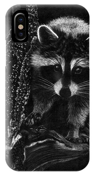 Curious Raccoon IPhone Case