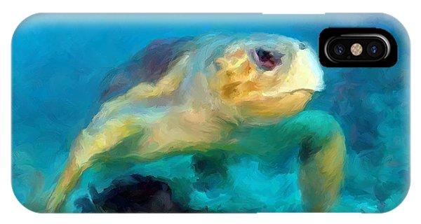 Curious Sea Turtle IPhone Case