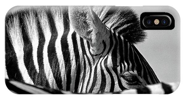 Curious Zebra Phone Case by Marc Pelissier