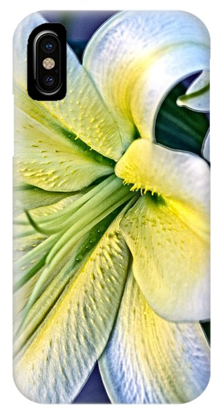 Curl Of A Lily IPhone Case