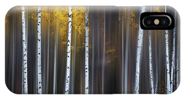 Birch Tree iPhone Case - Curtain Of Fall by Andy Hu