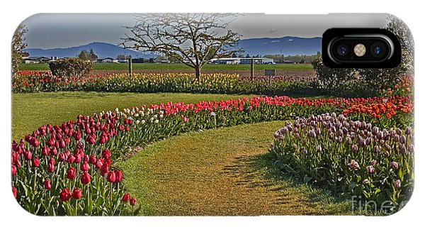 Curved Rows Of Tulip Landscape IPhone Case
