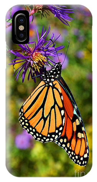 Custom Butterfly Waltz IPhone Case