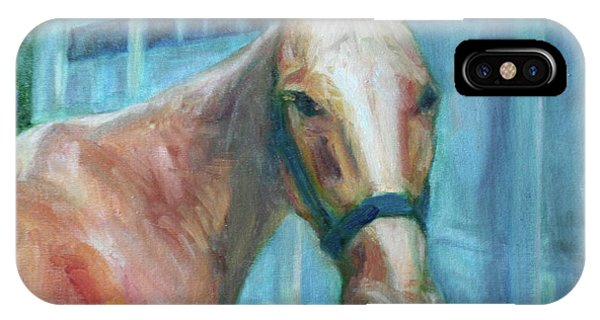 Custom Pet Portrait Painting - Original Artwork -  Horse - Dog - Cat - Bird IPhone Case