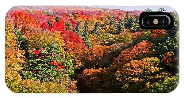 Cut River Gorge In Autumn No. 2 IPhone Case