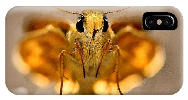 Cute And Curious Brown Butterfly IPhone Case