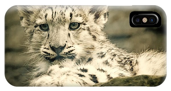 Cute Snow Cub IPhone Case