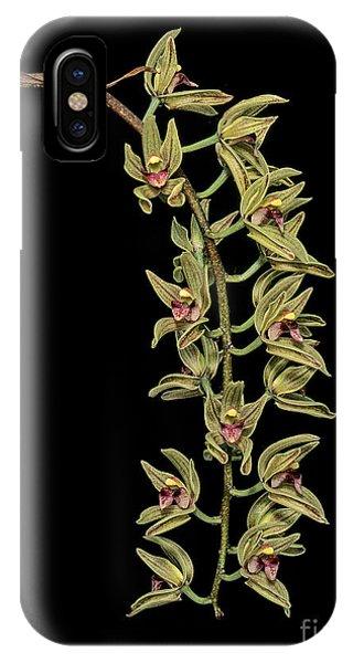 Cymbidium Devonianum Phone Case by Geoff Kidd