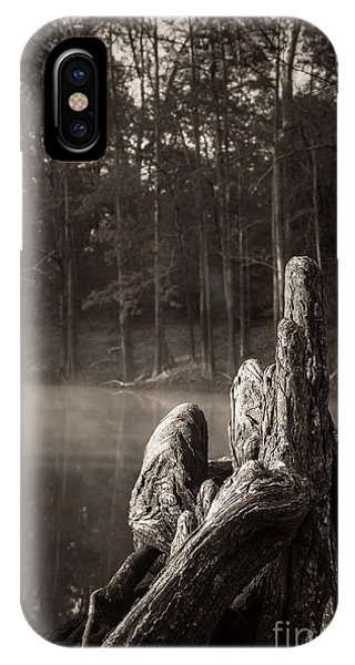 Cypress Knees In Sepia IPhone Case