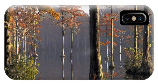 Cypress Pond IPhone Case