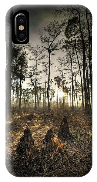 Cypress Stumps And Sunset Fire IPhone Case