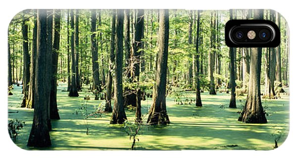 Mottled iPhone Case - Cypress Trees In A Forest, Shawnee by Panoramic Images