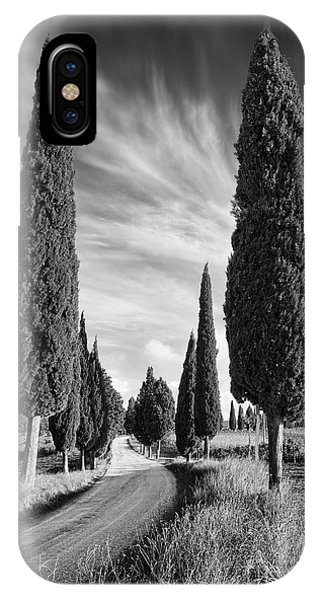 Cypress iPhone Case - Cypress Trees - Tuscany by Rod McLean