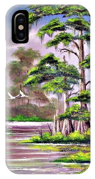 Wakulla iPhone Case - Cypress Trees-wakulla River Florida by Bill Holkham