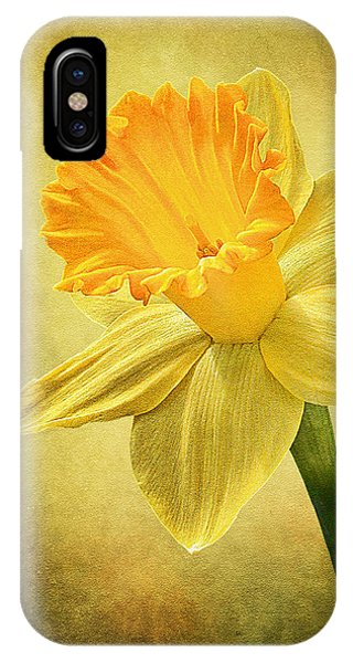 Daffodil IPhone Case