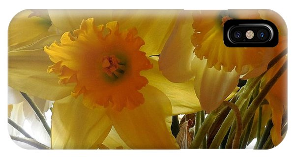 Daffodil Bouquet IPhone Case