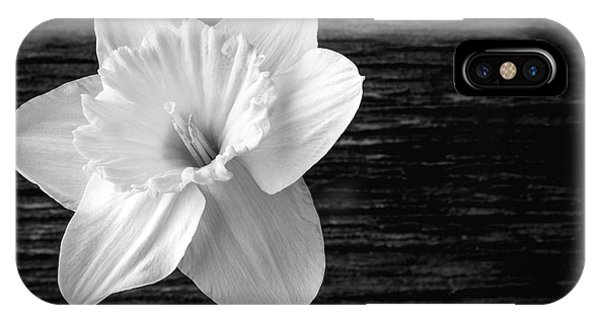 Black Tulip iPhone X Case - Daffodil Narcissus Flower Black And White by Edward Fielding