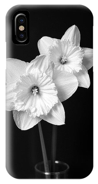 Horticulture iPhone Case - Daffodil Flowers Black And White by Jennie Marie Schell