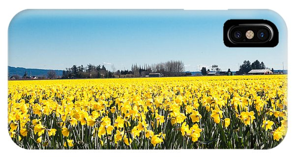 Daffodils And Blue Skies IPhone Case