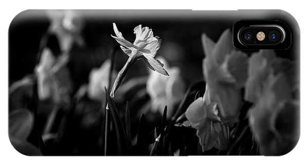 Daffodils In Black And White IPhone Case