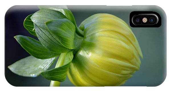 Dahlia Bud. IPhone Case