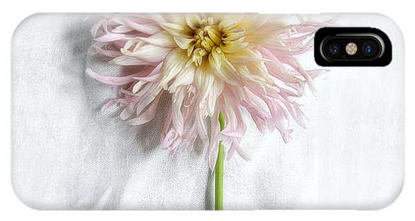 Dahlia #2 IPhone Case