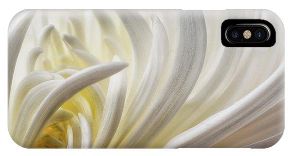 Flower Gardens iPhone Case - Dahlia 5 by David Rothstein