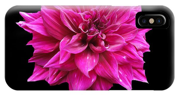 Dahlia Blossom IPhone Case