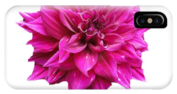 Dahlia Blossom On White IPhone Case