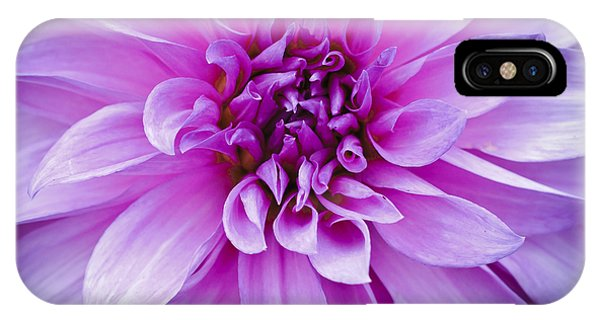 Dahlia Dahling IPhone Case