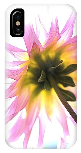 Dahlia Flower IPhone Case