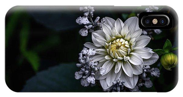 Flower Gardens iPhone Case - Dahlia Flower by Ronny Olsson