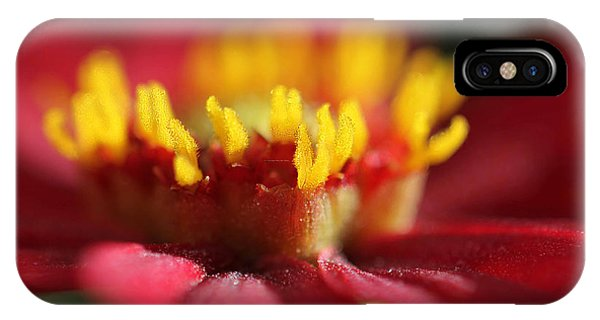 Dahlia Macro Red And Yellow IPhone Case