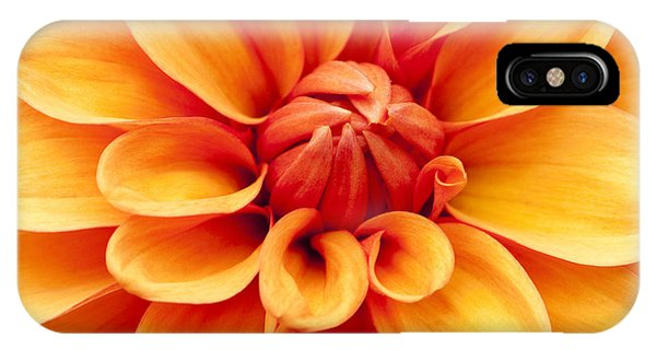 Close Focus Floral iPhone Case - Dahlia Squared by Anne Gilbert