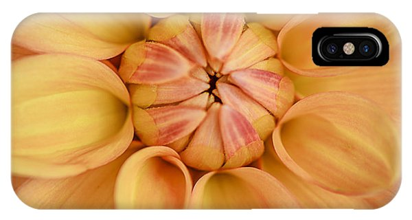 Dahlia Squared IPhone Case
