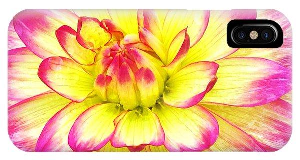 Petals iPhone Case - Dahlias Of Boulder I by Anna Porter