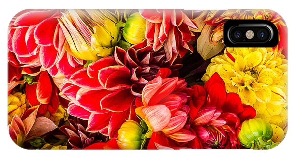 Dahlias Summer Color IPhone Case